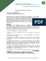 COSTO ESTUDIO GEOFISICO 3 SITIOS LAZARO CARDENAS