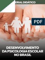 06 DESENVOLVIMENTO-DA-PSICOLOGIA-ESCOLAR-NO-BRASIL