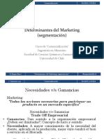 Determinantes_del_Marketing_segmentaci_n_