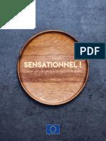 guía sensacional .pdf