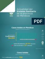 Informe semanal sistema sanitario Mendoza (8/1)