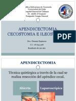 APENDICECTOMIA, CECOSTOMIA E ILEOSTOMIAS.