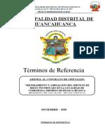 06 TDR DE OFICIALES (2) (1).docx