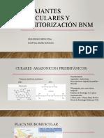 Presentación BNM.pptx