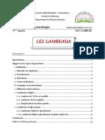 5_6_Lambeaux_I_II_Dr_LEBEZE
