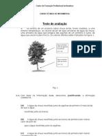 teste_avaliacao__1_iefp (1)