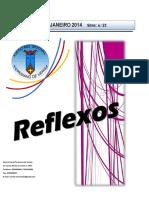 Reflexos n_23 novo.doc...2(=)