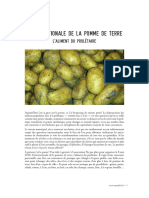 patate.pdf