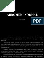 Imagenes Normales de Abdomen 1222224996404804 9