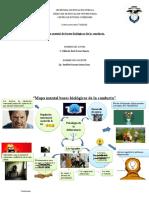 MAPA MENTAL BASES BIOLOGICAS DE LA CONDUCTA