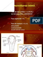 7-embriologie-4-cardiovascular.ppt