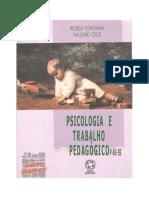 Abordagem piagetiana 44-55  (versão impressão)