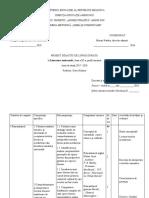 Proiectare de lungă durată_Lit.univ (XI)