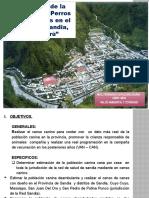 DEAMBULANTES_CENSO CANINO_REDS-SANDIA_ 2015