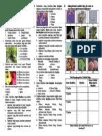 4. Soal Evaluasi Perkembangan Klasifikasi Makhluk Hidup