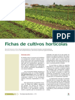 hortalizas  vainitas lechugas etc.pdf