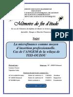 memoire final (1).pdf