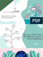 Types of Microorganism