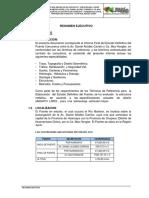 384642818-Resumen-Ejecutivo.pdf