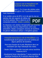 7116_Aula Bactérias Diazotróficas