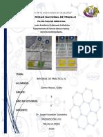 PRÁCTICA N 21 bioquímica