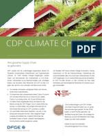 2021DFGE_CDP_ger_web.pdf