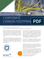 2021_DFGE_CCF_ger_web.pdf