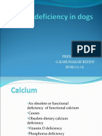 Mineral deficiency in dogs