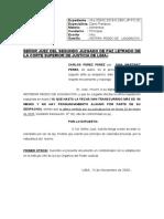 Reitera Pedido de Liquidación-gina Mariela Encinas Maron