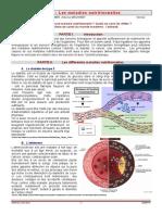 Obesite_Final.pdf