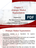 91560807 Chapter 3 Strategic Market Segmentation