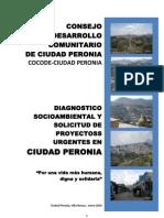 DIAGNOSTICO COMUNITARIO DE CIUDAD PERONIA
