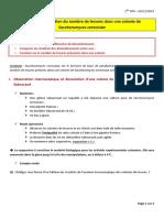 TP 11 - Determination Du Nombre d Individus Dans Une Colonie de Saccharomyces Cerevisiae