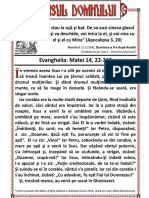 Glasul-Domnului-Duminica-a-9-a-dupa-Rusalii-Umblarea-pe-mare-Potolirea-furtunii-2014-1