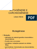 MUTAGENESE E CARCINOGENESE