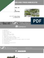Presentación1 urbanistica trabajo2 final.pptx