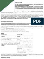 RESUMEN Practicas del lenguaje II Prof Giussani