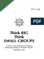Think Big Think Small Groups.pdf