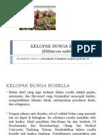 KELOPAK BUNGA ROSELLA (Hibiscus sabdariffa L