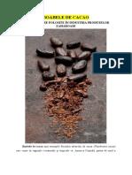 BOABELE DE CACAO - Materii prime de bază în fabricarea produselor zaharoase
