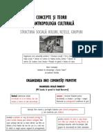 Structura Sociala - roluri, retele, grupuri
