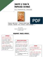 Etnogeneză, Etnomorfoză, Etnicizare