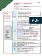 ITEM 055 Ménopause et andropause