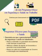 Diretrizes Para Programa de Segurança e Saúde