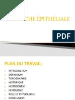 434472203-Attache-Epithelial.pptx