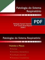 PE05_Respiratorio3_2008_2