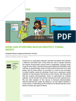 How can study mucus protect coral reefs