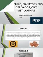 P2.2_Biorremediacion de CO y metilaminas