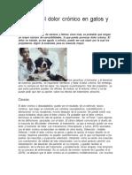 Manejo del dolor crónico en gatos y perros.pdf