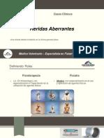 Heridas_Aberrantes.pdf